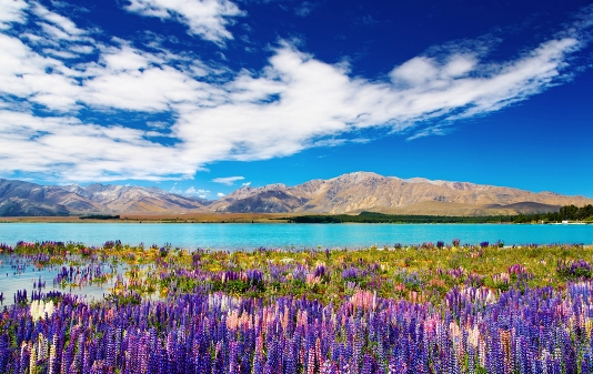 New Zealand blue lake and mountains